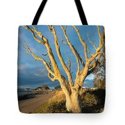 Bare Tree On The Spit Tote Bag