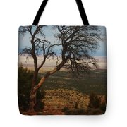 Bare Tree Tote Bag