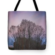 Bare Trees And Autumn Sky Tote Bag