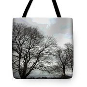 Bare Trees Winter Sky Tote Bag