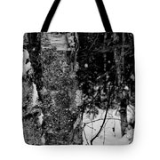 Bark And Trees In Winter Tote Bag