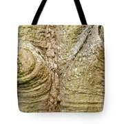 Bark Of Silk Floss Tree Background Texture Pattern Tote Bag