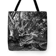 Barking Crab Tote Bag