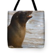 Barking Sealion Tote Bag