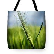 Barley Tote Bag