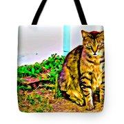 Barn Kitty Tote Bag