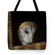 Barn Owl 5 Tote Bag
