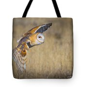 Barn Owl In Flight Tote Bag