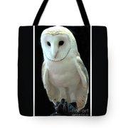 Barn Owl. Tote Bag