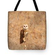 Barn Owl Perching Tote Bag