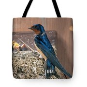 Barn Swallow At Nest Tote Bag