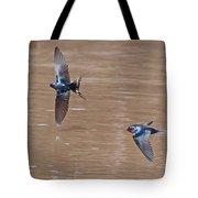 Barn Swallow In Flight Tote Bag by Mike Dickie