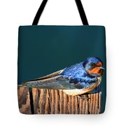 Barn Swallow Perching Tote Bag