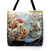 Barnacle Shell Tote Bag
