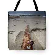 Barnacle Tales Tote Bag