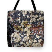 Barnacles Tote Bag