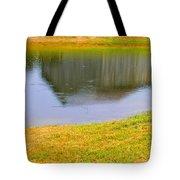 Barnflection Tote Bag