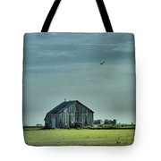 The Flight Home Tote Bag by Dan Sproul