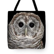 Barred Owl 3 Tote Bag