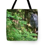 Barred Owl In Forest Tote Bag