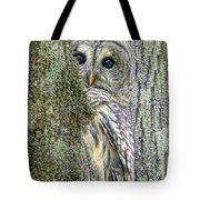 Barred Owl Peek A Boo Tote Bag