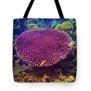 Barrier Reef Coral II Tote Bag