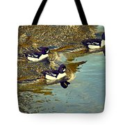 Barrow's Goldeneyes Going For The Gold Tote Bag