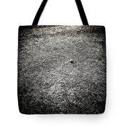 Baseball Field 4 Tote Bag