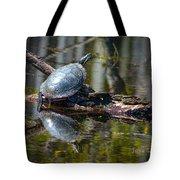 Basking Turtle Tote Bag