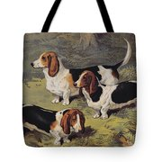 Basset Hounds Tote Bag by English School