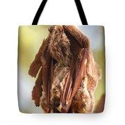 Sleeping Bat Tote Bag