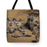 Bat-eared Fox Pups Tote Bag
