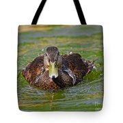 Bathing Black Duck Tote Bag