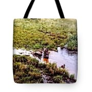 Bathing Tote Bag