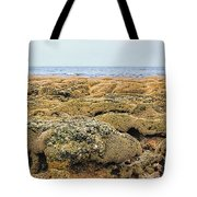 Sabellariid Worm Reef  Tote Bag