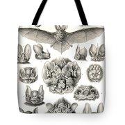 Bats Bats And More Bats Tote Bag