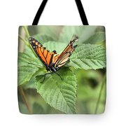Battered Butterfly Tote Bag