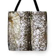 Battered By Winter Blizzard Tote Bag