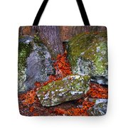 Battlefield In Fall Colors Tote Bag