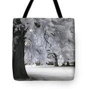 Battlefield Sentinel Tote Bag