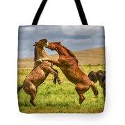 Battling Stallions Tote Bag
