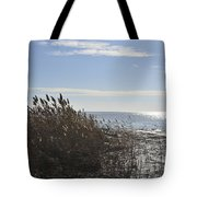 Bay Breeze In Winter Tote Bag
