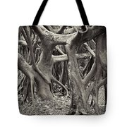Baynan Roots Tote Bag