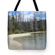 Beach At Redfish Lake Tote Bag