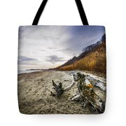 Beach At Scarborough Bluffs Tote Bag by Elena Elisseeva