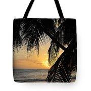 Beach At Sunset 1 Tote Bag