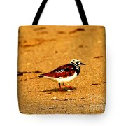 Beach Bird 1 Tote Bag