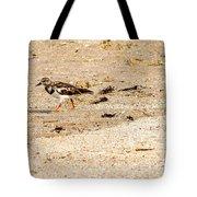 Beach Bird 2 Tote Bag