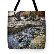 Beach Brook At Scarborough Bluffs Tote Bag by Elena Elisseeva