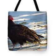 Beach Buzzard Tote Bag